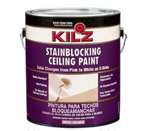 ceiling spray paint 1 gallon