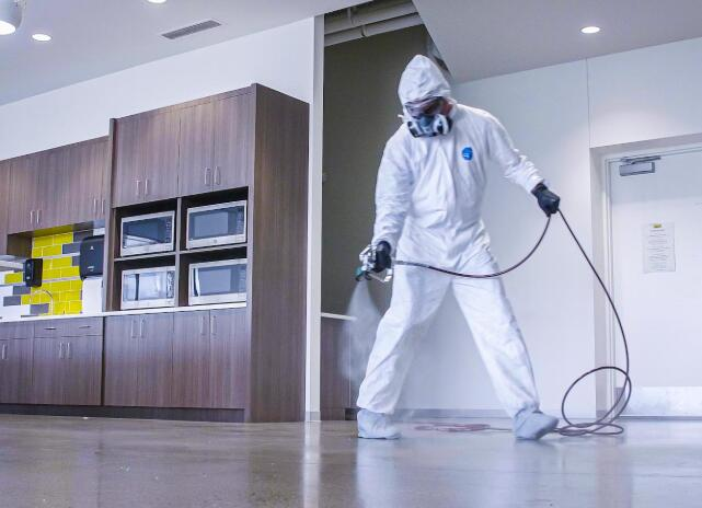 best paint sprayer for home use reviews